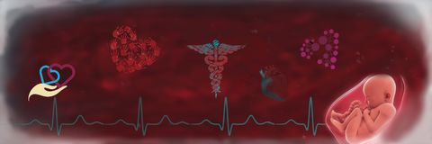 小儿科心脏病学 向量例证