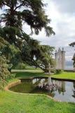 小公园的池塘 免版税图库摄影