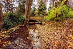 小具体桥梁和小河在秋天 库存照片