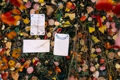 小册子或新娘卡片大模型反对秋天叶子与空的地方文本的 库存图片