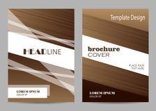 小册子模板布局设计 抽象棕色和白色镶边背景 图库摄影