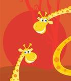 小动物大长颈鹿的徒步旅行队 免版税图库摄影