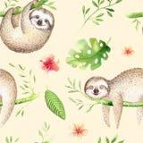 小动物怠惰托儿所隔绝了无缝的样式绘画 水彩boho热带图画,儿童热带图画 皇族释放例证