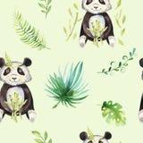 小动物托儿所被隔绝的无缝的样式 水彩boho热带图画,儿童热带图画逗人喜爱的熊猫和 库存图片
