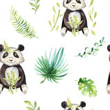 小动物托儿所被隔绝的无缝的样式 水彩boho热带图画,儿童热带图画逗人喜爱的熊猫和 向量例证