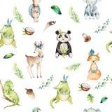 小动物托儿所被隔绝的无缝的样式 水彩boho热带图画,儿童热带图画,熊猫,逗人喜爱 免版税库存图片