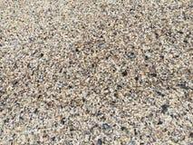 小卵石和壳当海滩背景 免版税库存照片