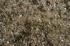 小卵石和岩石纹理 免版税库存照片