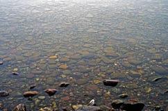 小卵石在冰川国家公园的湖 免版税库存图片