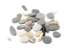 小卵石壳 库存照片
