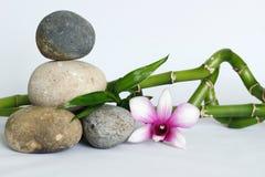 小卵石灰色自然在与一朵同色而浓淡不同的兰花的生活方式禅宗,在白色backgroun扭转的竹子的右边 库存照片