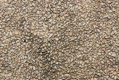 小卵石石墙 库存图片