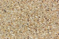 小卵石石渣地板 库存照片