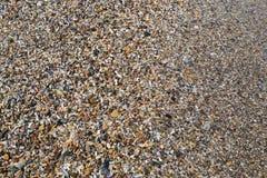 小卵石石渣 库存照片