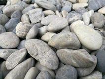 小卵石石背景,室外自然河白色灰色岩石小卵石,抽象干燥庭院圆的石头纹理, constru的材料 免版税库存图片