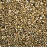 小卵石石背景 库存照片