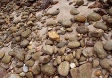 小卵石背景和纹理,海滩 图库摄影