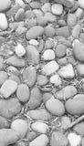 小卵石背景 图库摄影