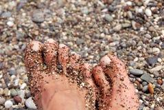 小卵石脚趾 免版税库存照片