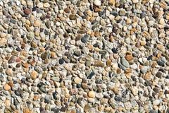 小卵石水泥墙壁背景 图库摄影