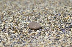 小卵石细节在海滩的 免版税图库摄影