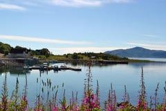 小口岸在Lodingen 挪威 库存照片