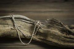 小古色古香的银色链项链在漂流木头设置了 库存照片