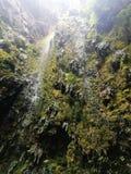 小和美丽的自然公园瀑布 免版税图库摄影