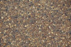 小圆的石岩石小卵石墙壁地板纹理背景 库存图片