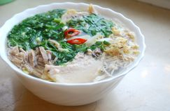 小圆面包Thang -与由切好的香菜装饰的切细的鸡、火腿和鸡蛋的传统越南盘 免版税库存图片