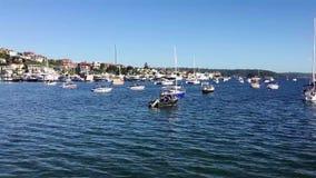 小型飞机小船在夹竹桃,悉尼港口,澳大利亚 影视素材