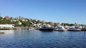 小型飞机小船在夹竹桃,悉尼港口,澳大利亚 股票录像