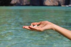 小壳在手中在天蓝色的海的背景 免版税库存照片