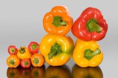 小大的甜椒 免版税库存图片