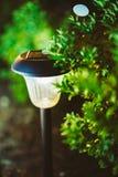 小太阳庭院光,灯笼在花床上 免版税库存图片