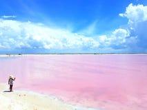 小女孩不可能抵抗迷人的桃红色盐水湖在Las Coloradas尤加坦墨西哥 库存图片