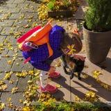 小女孩和宠物小猫一起见面 免版税库存图片