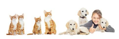 小女孩和小狗和小猫 免版税库存图片