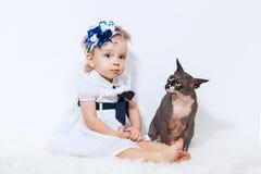 小女孩和狮身人面象猫 免版税库存图片