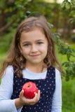 小女孩和红色苹果计算机 库存图片