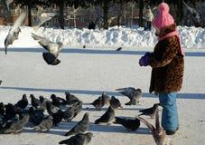小女孩哺养的鸽子在冬天 库存照片