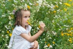 小女孩嗅在草甸的野花, 免版税库存照片