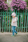 小女孩嗅花 在绿色fe背景  图库摄影