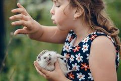 小女孩在一只灰色多刺的猬刺了自己 免版税库存图片