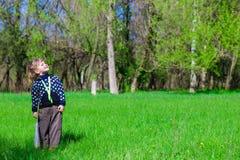 小女孩在与花包裹的绿草站立  免版税库存照片