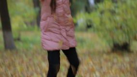 小女孩在公园秋天 可爱的小女孩微笑 股票录像