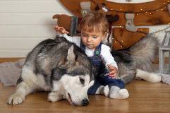 小女孩在房子和爱斯基摩狗里 库存照片