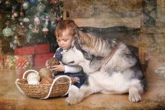 小女孩在房子和爱斯基摩狗里 免版税图库摄影