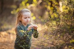 小女孩在春天握一根开花的枝杈 免版税库存照片