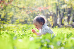 小女孩在春天森林里 免版税图库摄影